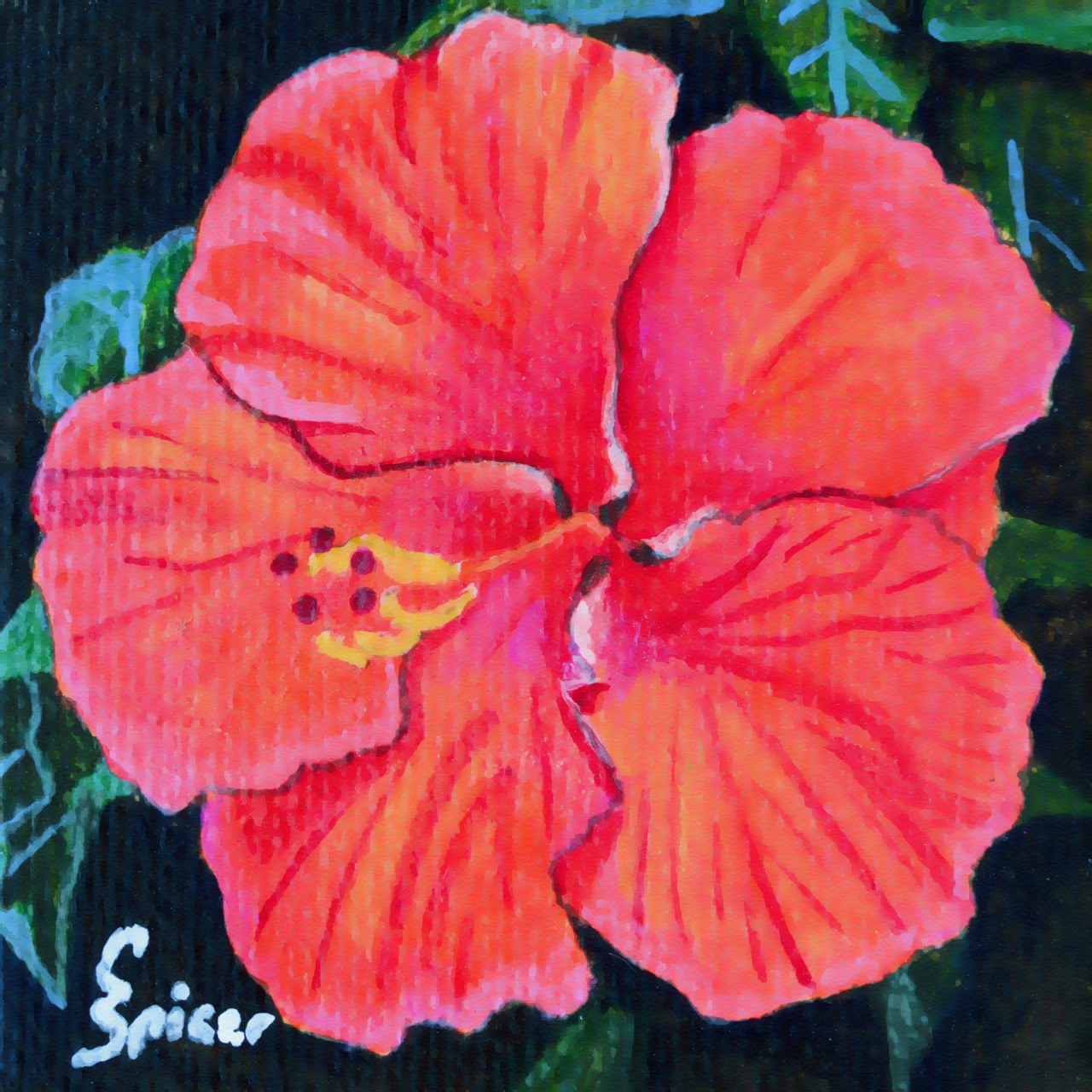 Red Hibiscus Acrylic Painting By Christopher Spicer Cbspicer