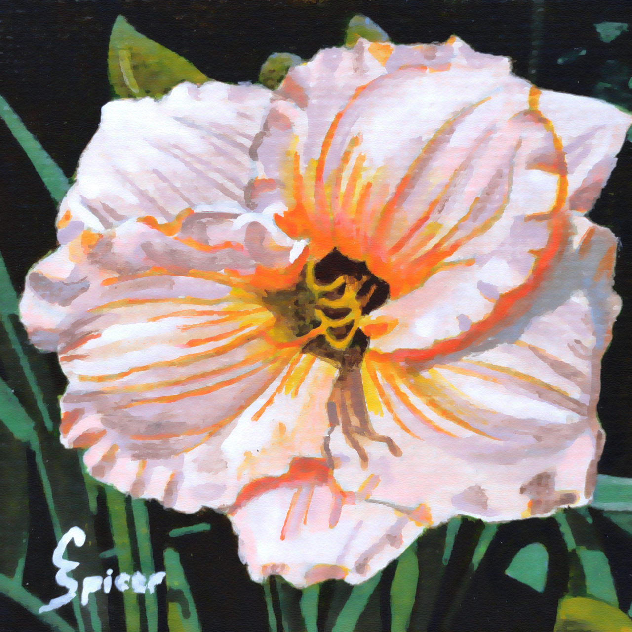 White hibiscus acrylic painting by christopher spicer cbspicer description izmirmasajfo