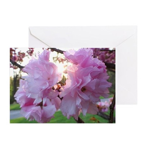 Shop for art inspired products by christopher spicer cbspicer kwanzan cherry blossoms digital photograph by christopher spicer greeting card m4hsunfo